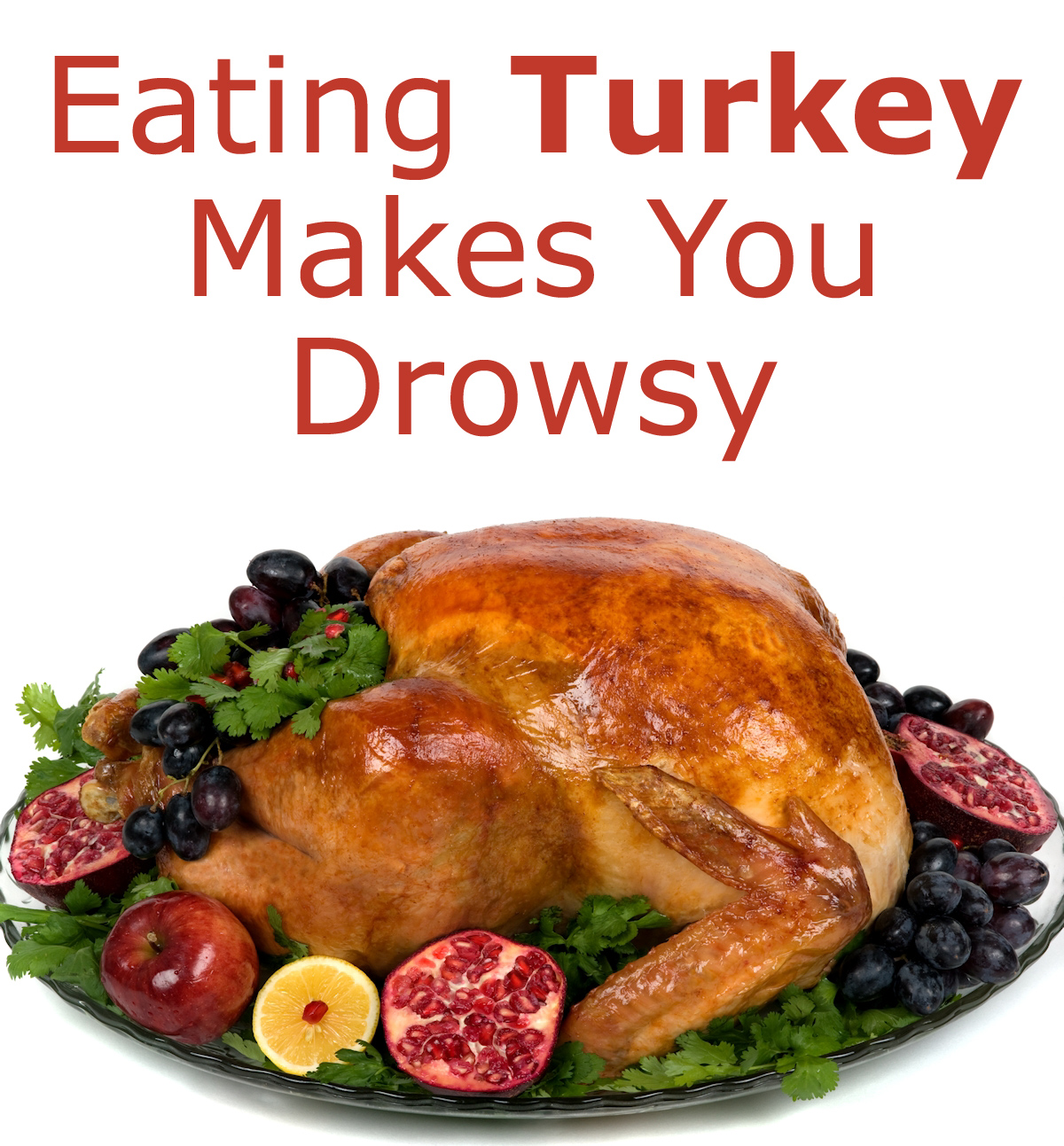 Eating Turkey Makes You Drowsy
