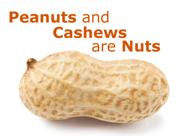 Peanuts and Cashews are Nuts