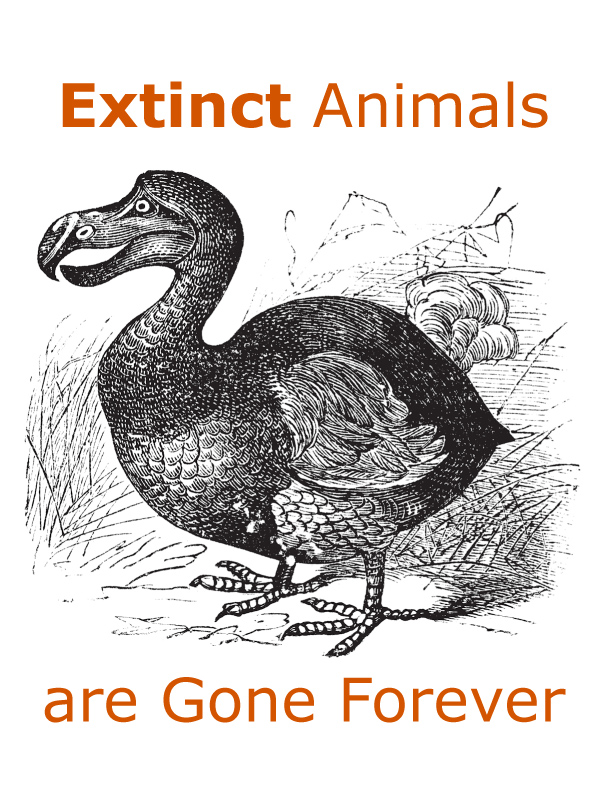 Extinct Animals are Gone Forever