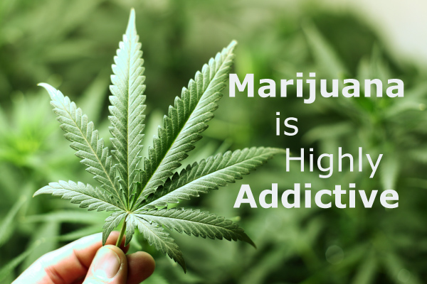 Marijuana is Highly Addictive